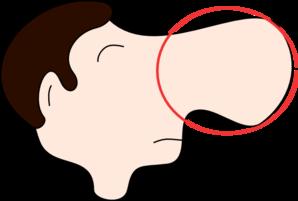 Schimmelgeruch entfernen